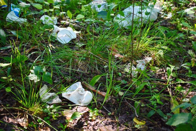 垃圾和塑料在森林里 库存照片