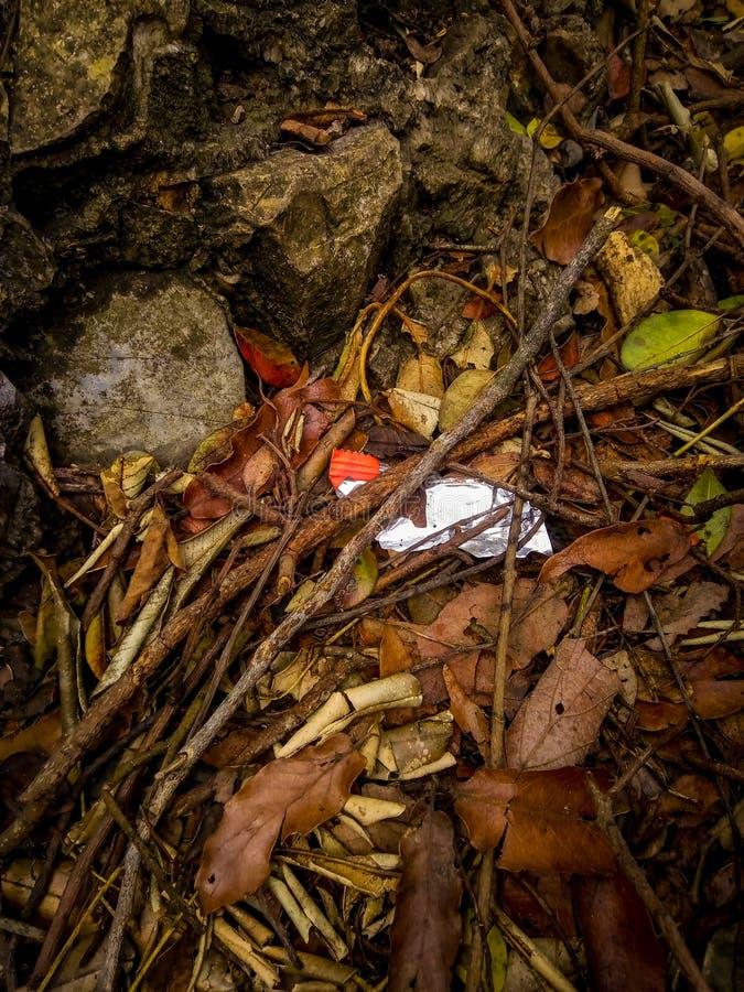 垃圾在世界上 库存照片
