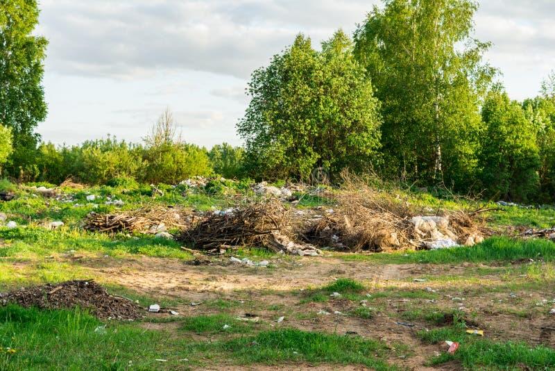 垃圾在森林里,废物处置,自然的污染的生态问题 免版税库存照片