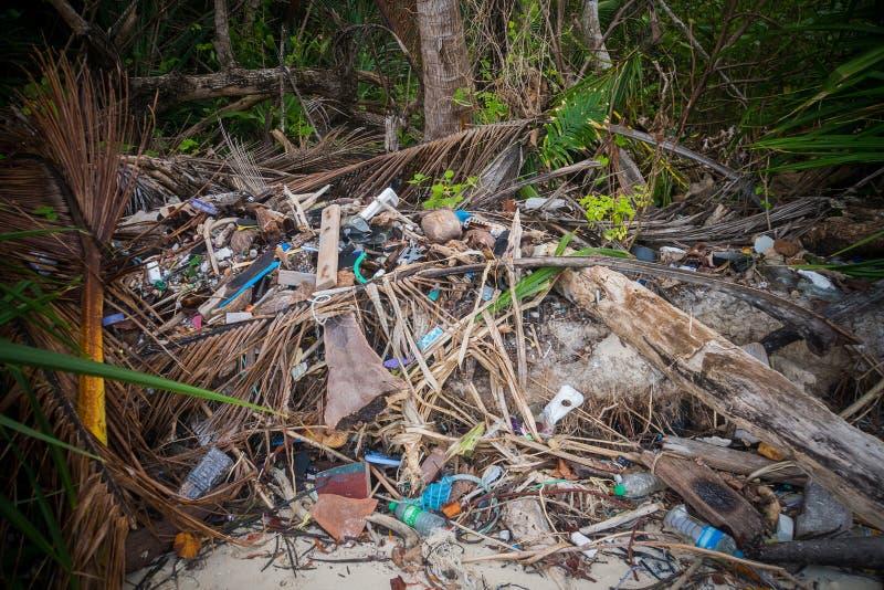 垃圾堆储蓄分支木头, 免版税图库摄影