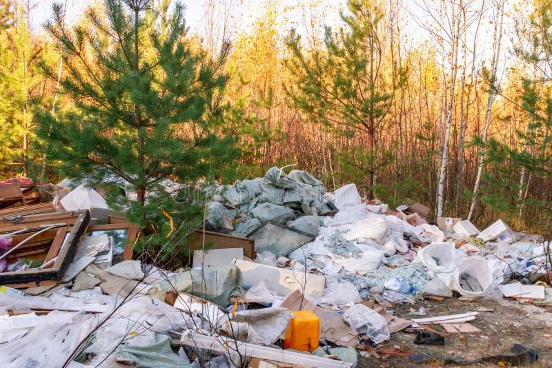垃圾堆在森林里 库存照片