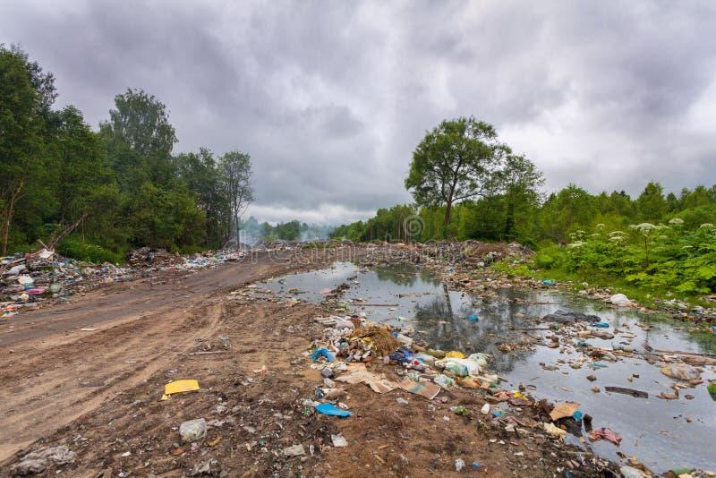 垃圾填埋或转储家庭垃圾和垃圾在是沾染和毒害环境在森林里的肮脏的水中 免版税库存照片