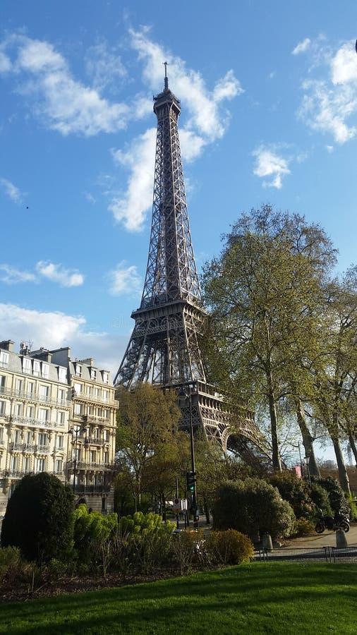 埃佛尔铁塔天光巴黎法国 免版税库存照片