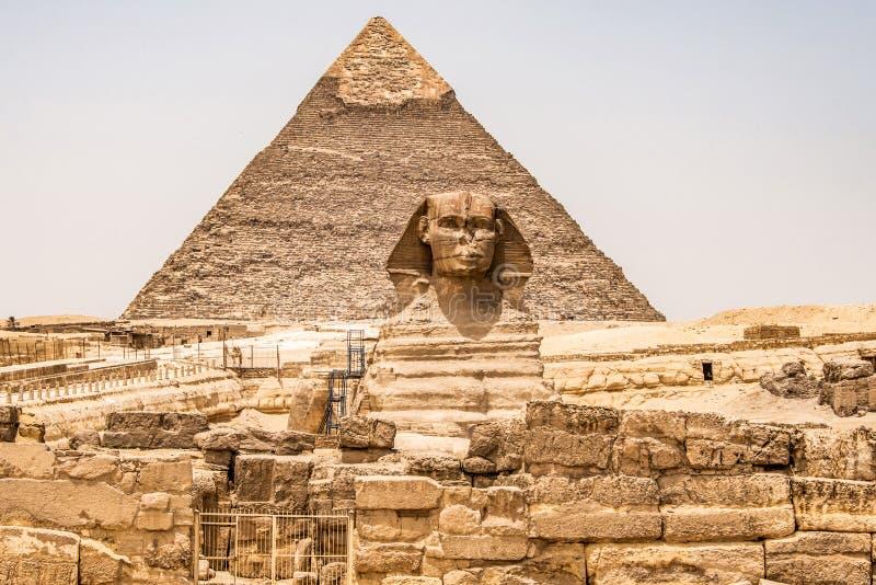 埃及伟大的狮身人面象充分的身体画象头,有吉萨棉背景埃及金字塔的空以没人 复制空间 库存照片