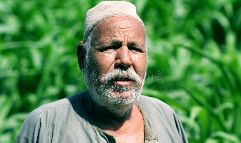 埃及农夫 免版税库存图片
