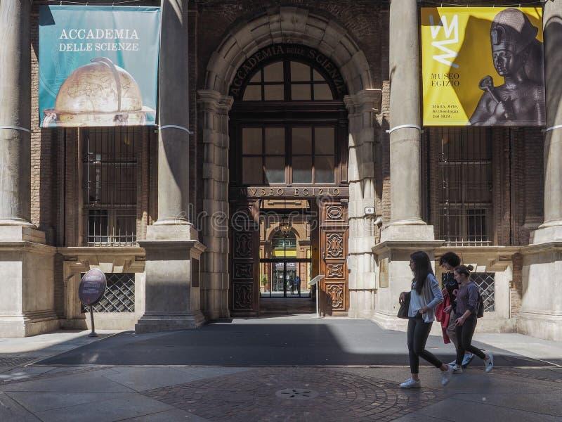 埃及博物馆(埃及博物馆)在都灵 图库摄影
