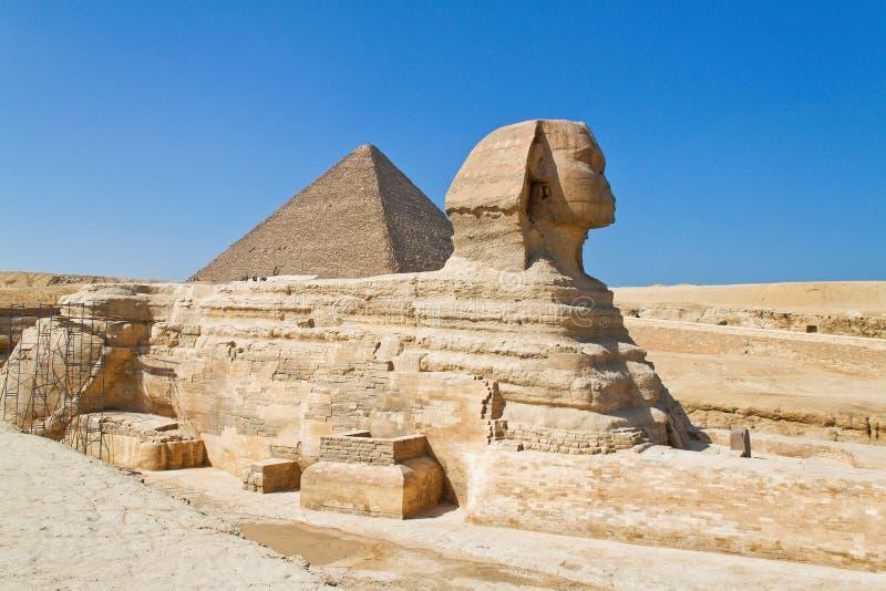 埃及吉萨棉狮身人面象 免版税图库摄影