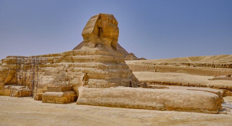 埃及开罗吉萨高原的吉萨狮身人面像 库存照片