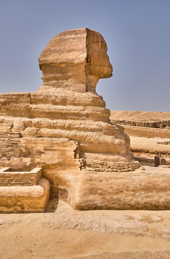 埃及开罗吉萨高原的吉萨狮身人面像 免版税库存图片