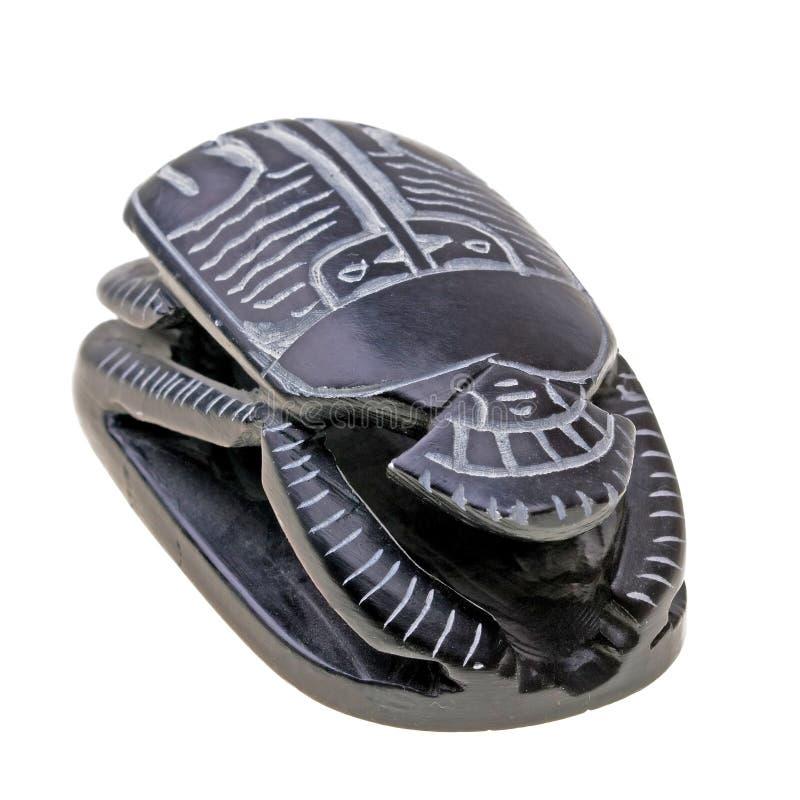 埃及查出的礼节金龟子白色 图库摄影