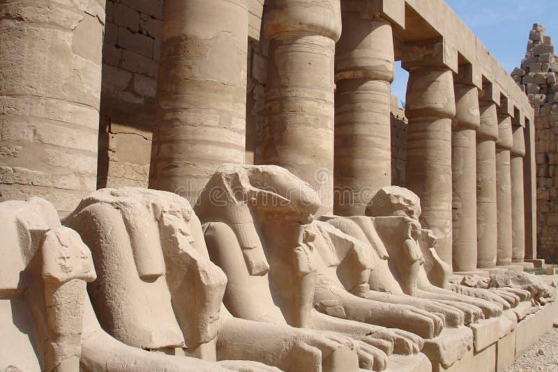 埃及狮子系列雕象 免版税库存照片
