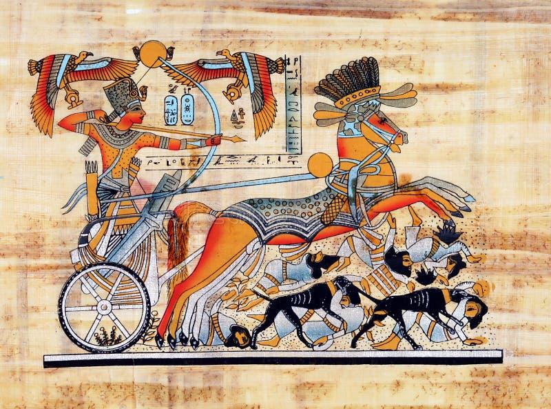 埃及纸莎草 免版税图库摄影