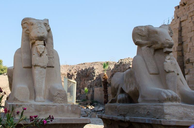 埃及艺术 卡纳克寺 卢克索埃及周围 免版税库存图片