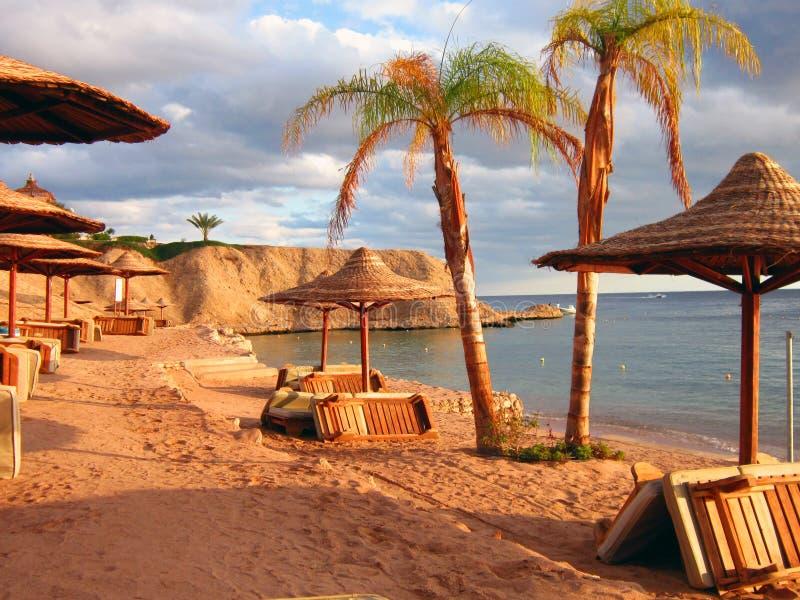 埃及Sharm El谢赫海滩和海 免版税库存图片