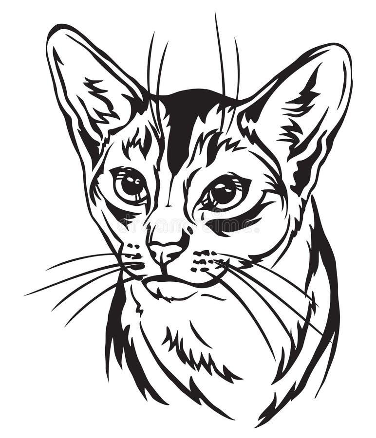埃塞俄比亚猫传染媒介例证装饰画象  向量例证
