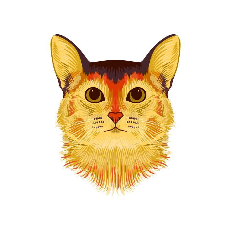 埃塞俄比亚猫传染媒介说明画象  手拉的剪影,家养的短发猫逗人喜爱的品种  库存例证