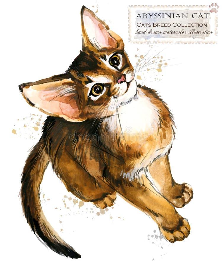 埃塞俄比亚猫 水彩家宠物例证 猫助长系列 向量例证