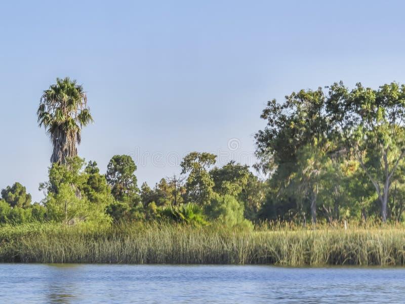 埃尔多拉多Park湖 库存图片
