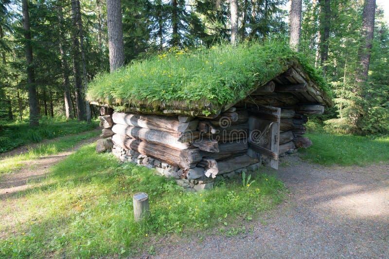 埃尔沃吕姆,挪威 库存照片