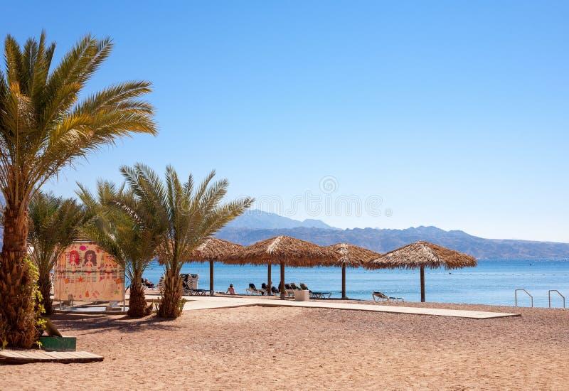 埃拉特美女在以色列,红海官网海滩三国图片