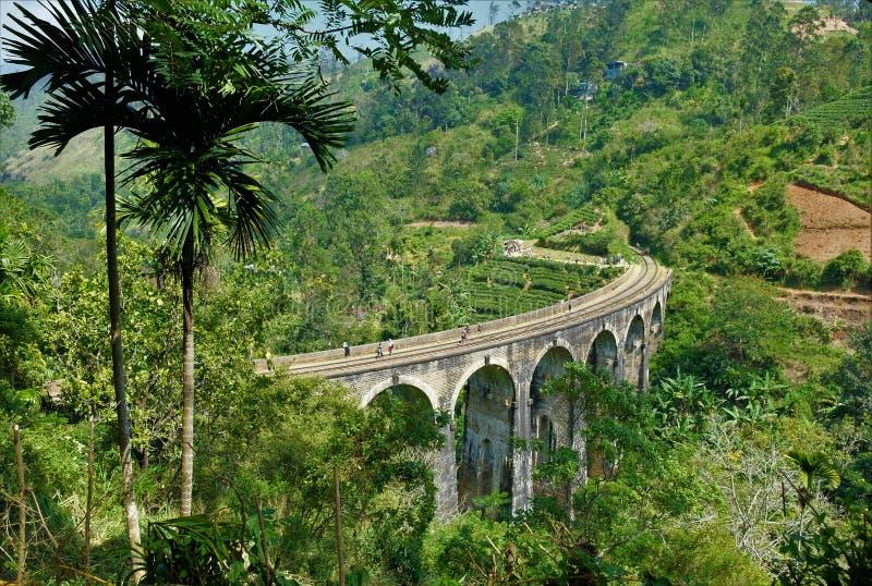 埃拉,斯里兰卡著名九曲拱桥梁  库存照片