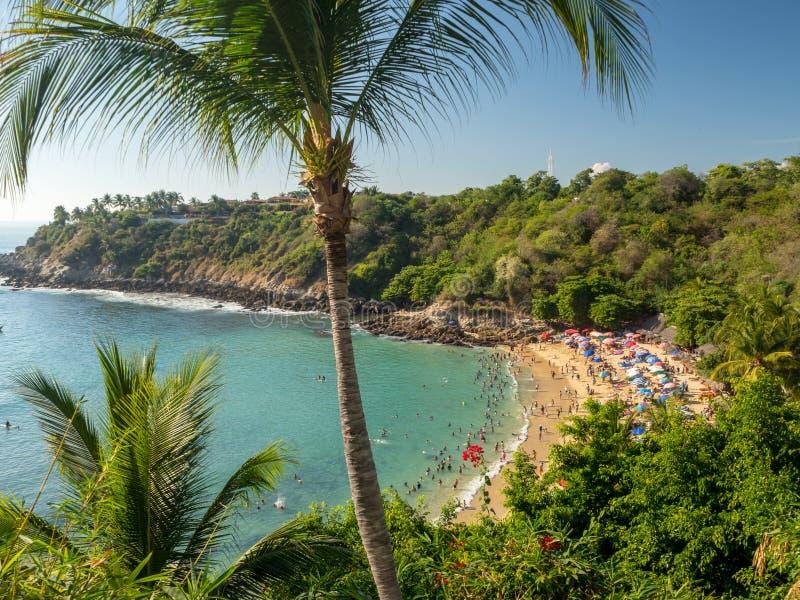 埃斯孔迪多港,瓦哈卡,墨西哥,南美洲:[Playa Carrizalillo,crowdwed自然海滩,旅游目的地] 免版税库存照片
