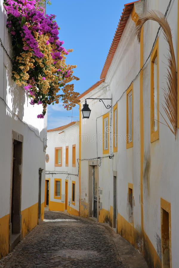 埃武拉,葡萄牙:狭窄修补了在老镇里面的街道有五颜六色的九重葛的 库存图片