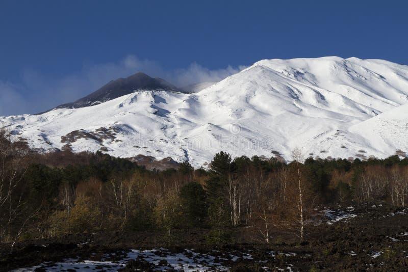 埃特纳火山北部风景 免版税库存图片