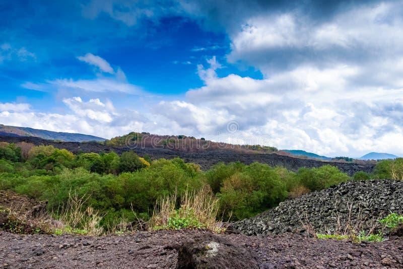 埃特纳火山, Etna美丽如画的火山的风景国家公园,西西里岛,意大利 免版税图库摄影