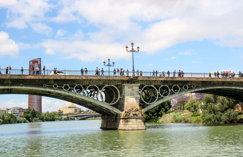 埃菲尔桥梁 库存图片