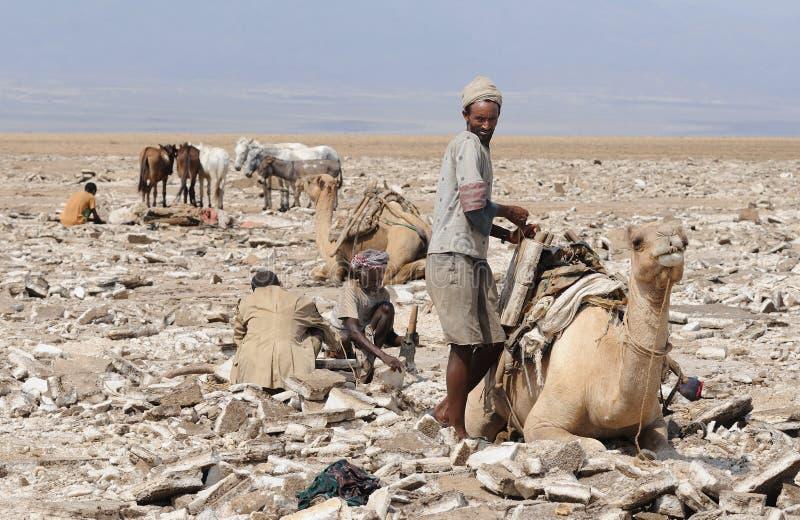 埃赛俄比亚的人员 免版税库存图片