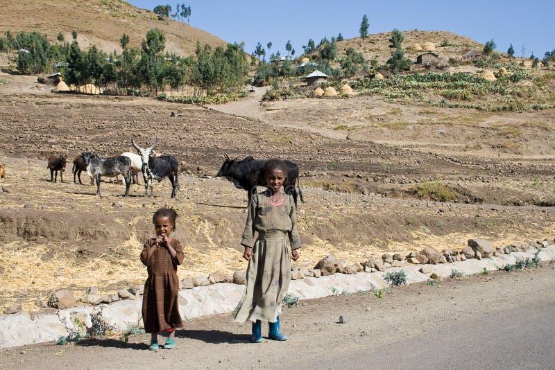 埃赛俄比亚的传统女孩 库存照片