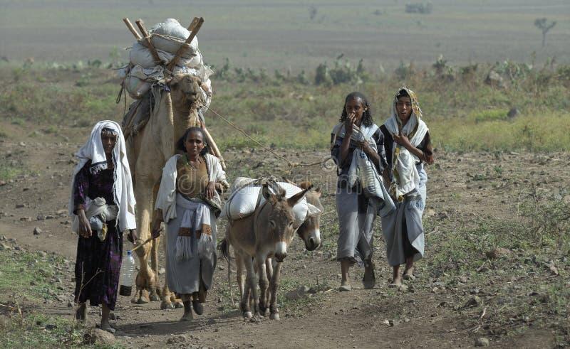 埃赛俄比亚的系列 免版税图库摄影