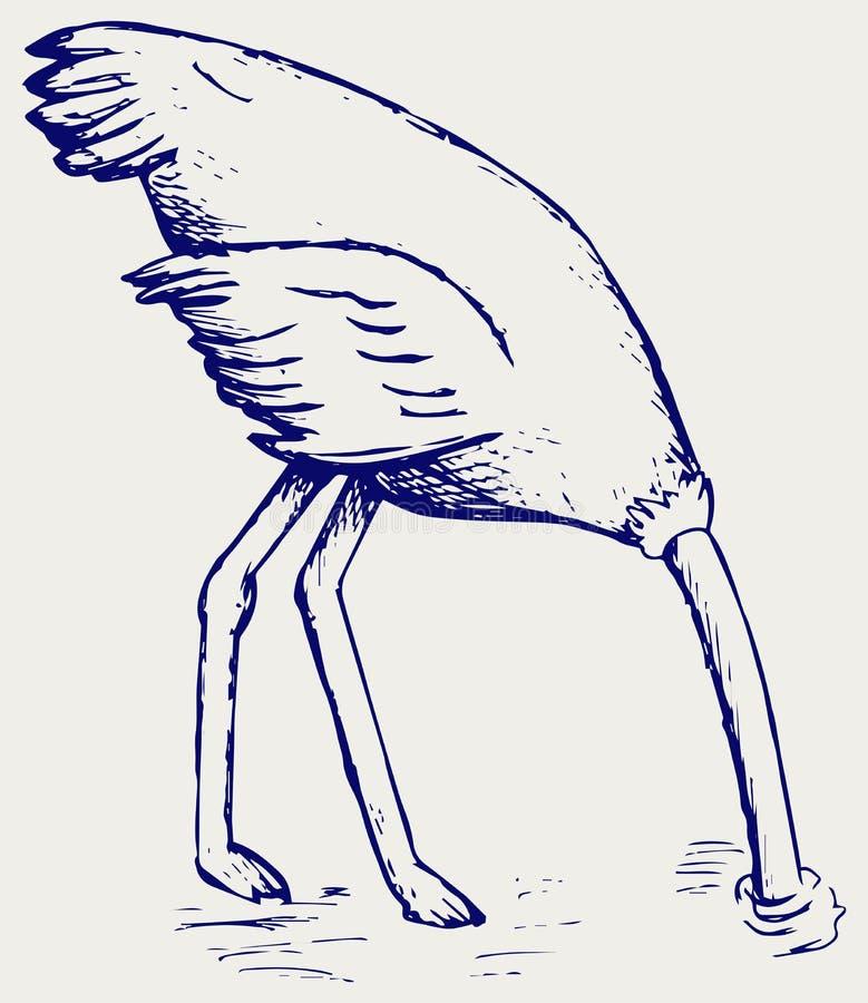 埋没它的头的驼鸟在沙子 皇族释放例证