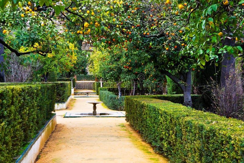城堡从事园艺实际塞维利亚西班牙 免版税图库摄影
