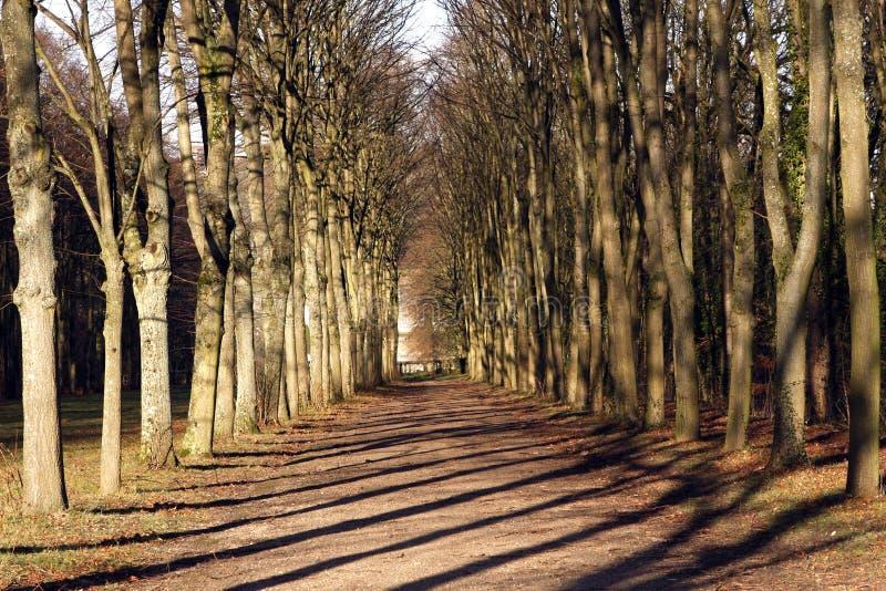 城堡公园在圣克卢-法国 免版税库存图片