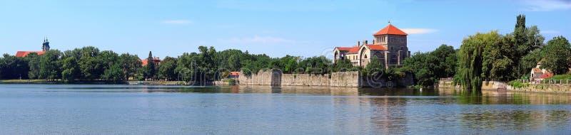 城堡匈牙利全景tata 免版税库存照片