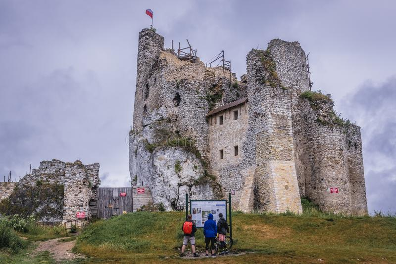 城堡在米罗 免版税库存照片