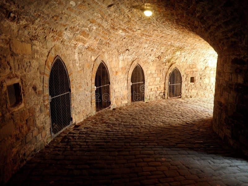 城堡地下土牢监狱 免版税库存照片