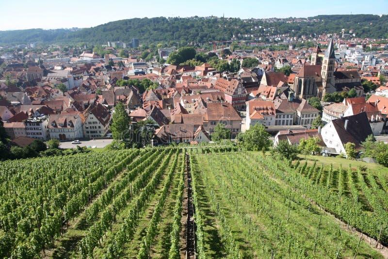 从城堡城镇的埃斯林根视图在斯图加特, Baden附近 图库摄影