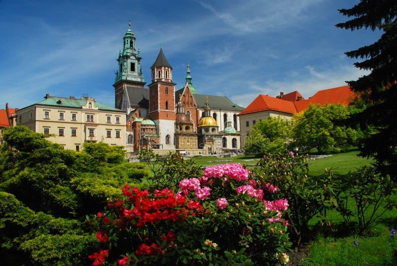 城堡大教堂克拉科夫波兰wawel 库存图片