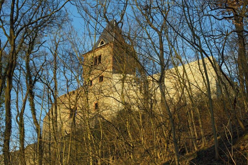 城堡废墟科学怪人 免版税库存照片
