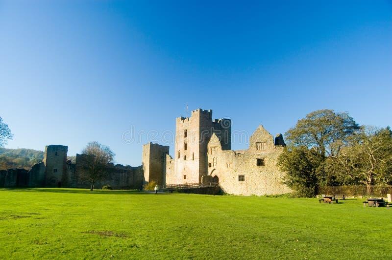 城堡横向 库存照片