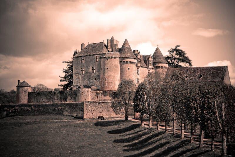 城堡法语葡萄酒 免版税图库摄影