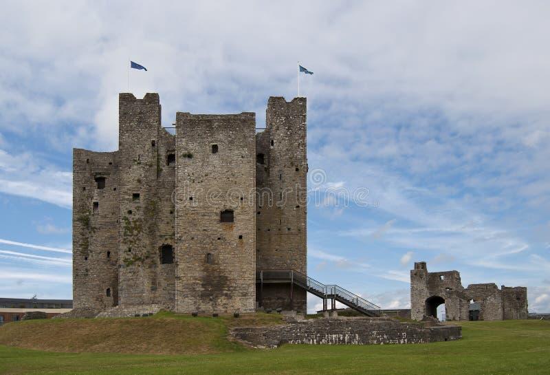城堡爱尔兰修整 免版税库存图片