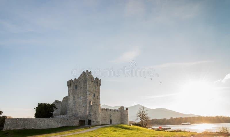 城堡爱尔兰罗斯 免版税库存照片