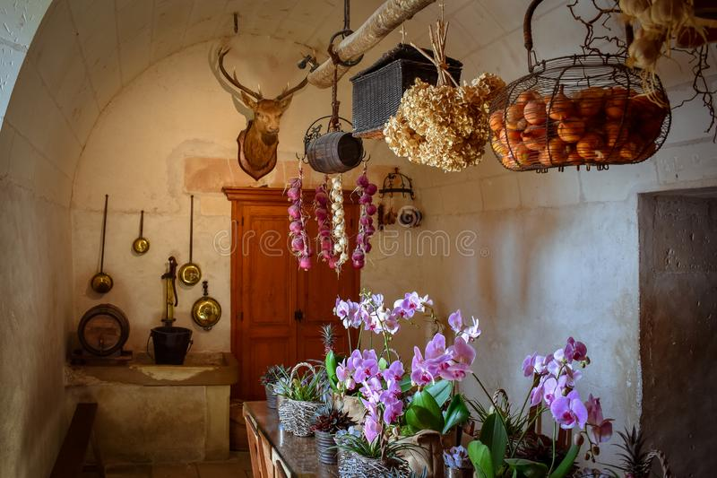 城堡的老厨房的休闲 吃桌,天然产品,所有主持由鹿头,寻找战利品 免版税库存图片