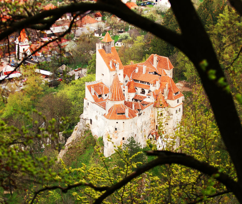 城堡结构树 图库摄影