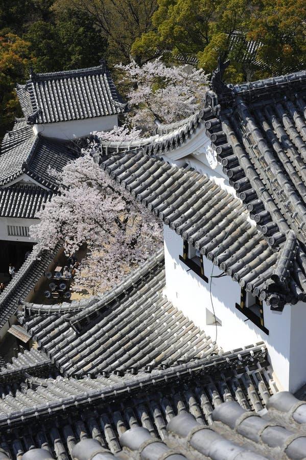 城堡详细资料姬路日本 库存照片
