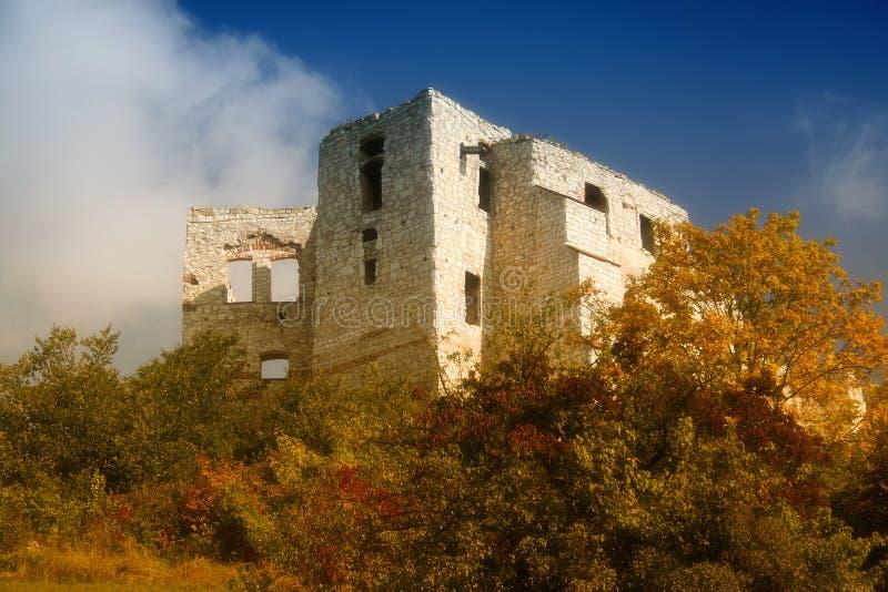 城堡dolny kazimierz 库存图片